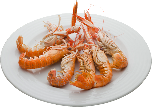LaCagouille-img-la-carte-crustaces
